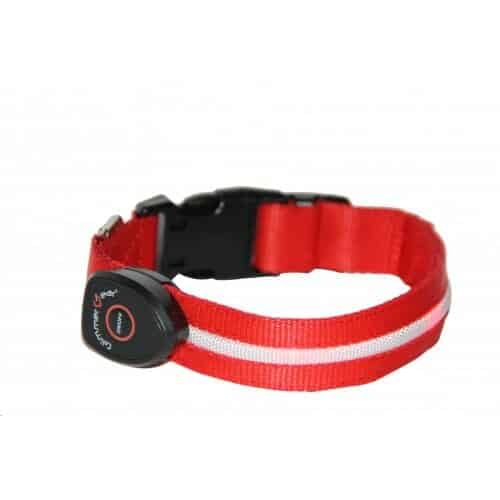Discounted Glimmer Gear USB Rechargeable LED Dog Collar - Dog